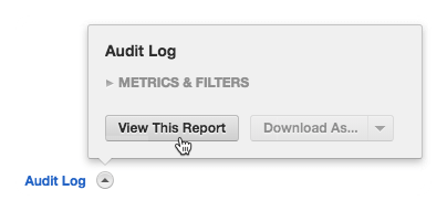 Audit-Log-Report.png